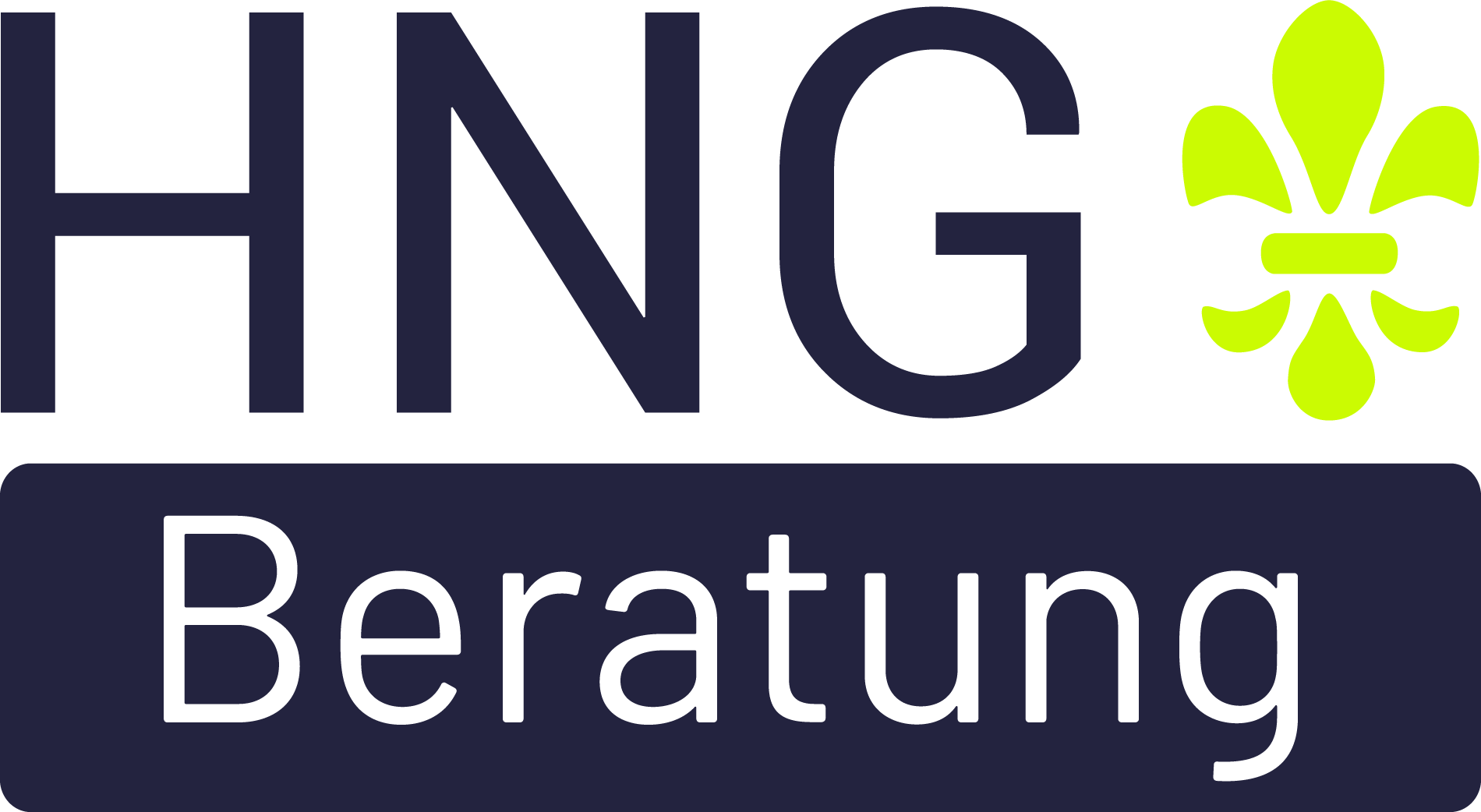 HNG-Beratung